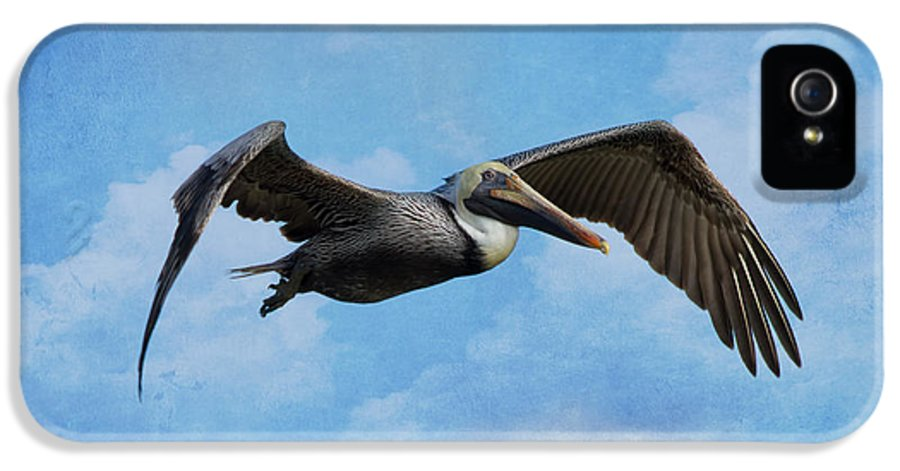 Pelican IPhone 5 Case featuring the photograph Soaring By by Kim Hojnacki