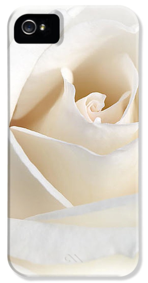 Rose IPhone 5 Case featuring the photograph Soft Ivory Rose Flower by Jennie Marie Schell