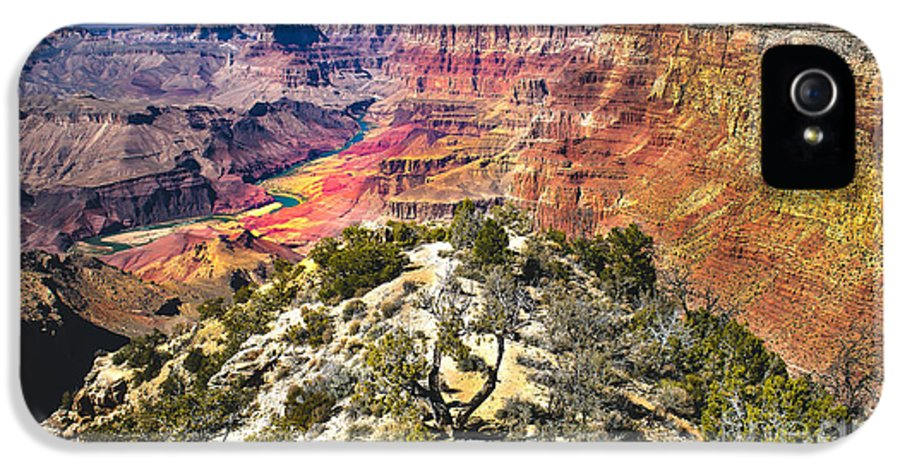 Grand Canyon IPhone 5 Case featuring the photograph South Rim From The Butte by Robert Bales