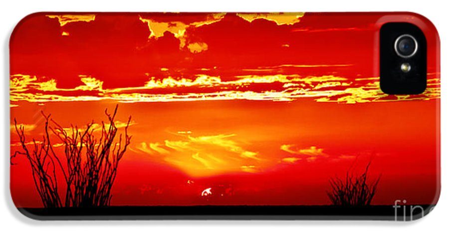 Arizona IPhone 5 Case featuring the photograph Southwest Sunset by Robert Bales