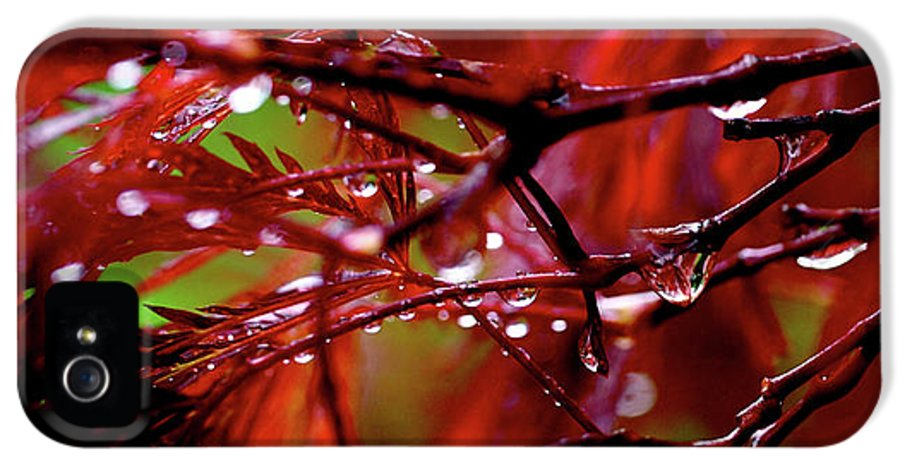 Abstract IPhone 5 Case featuring the photograph Spring Rain by Rona Black