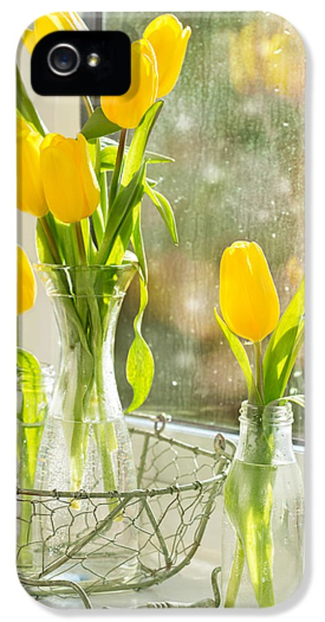 Tulip IPhone 5 Case featuring the photograph Spring Tulips by Amanda Elwell