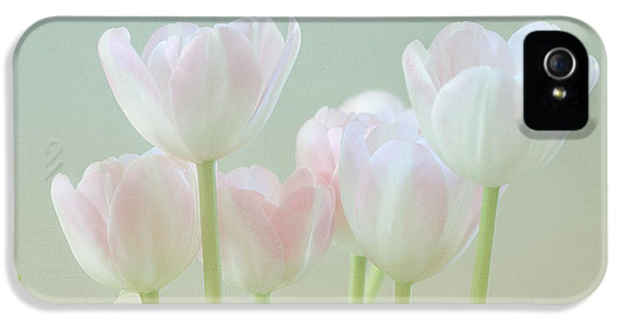 White Flower IPhone 5 Case featuring the photograph Spring's Pastels by Kim Hojnacki