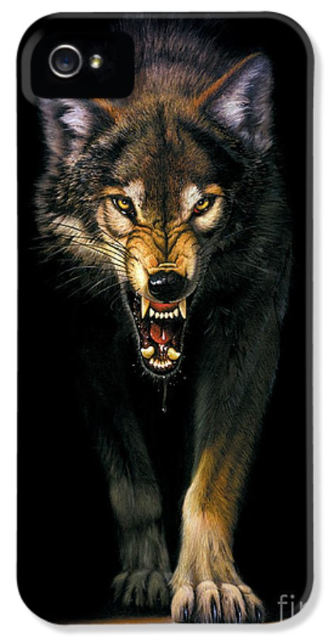 Animal IPhone 5 Case featuring the photograph Stalking Wolf by MGL Studio - Chris Hiett