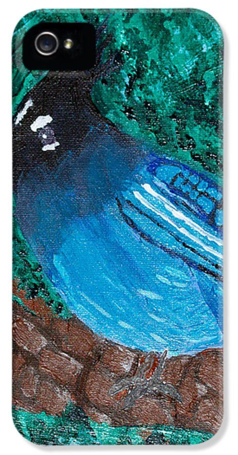 Stellar's Jay IPhone 5 Case featuring the painting Stellar's Jay by Lloyd Alexander