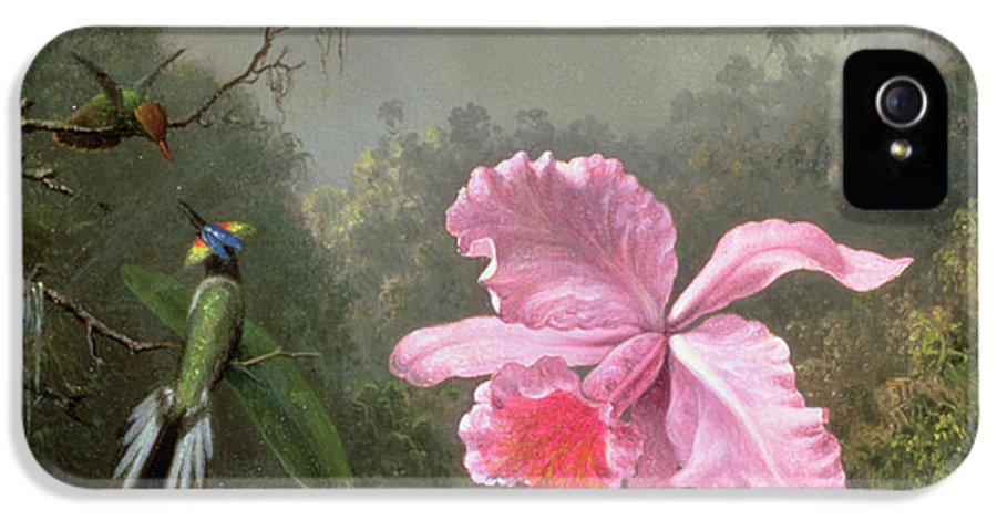 Heade IPhone 5 Case featuring the painting Still Life With An Orchid And A Pair Of Hummingbirds by Martin Johnson Heade