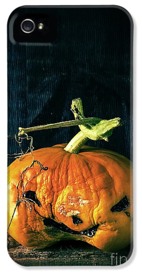Halloween IPhone 5 Case featuring the photograph Stingy Jack - Scary Halloween Pumpkin by Edward Fielding