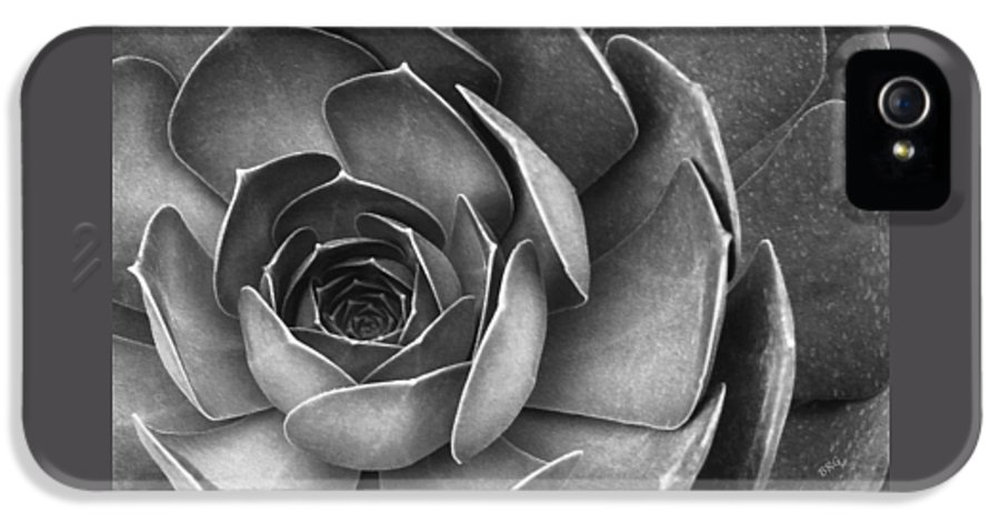 Abstract Succulent IPhone 5 Case featuring the photograph Succulent In Black And White by Ben and Raisa Gertsberg