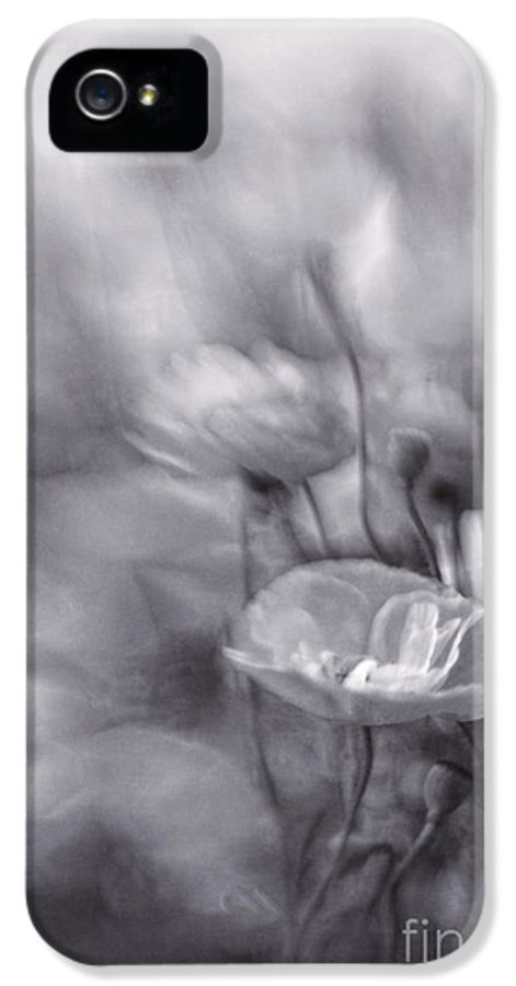 And IPhone 5 Case featuring the photograph Summer Whispers Iv by Priska Wettstein