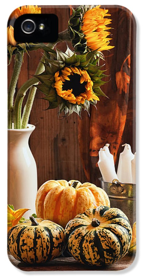 Pumpkin IPhone 5 Case featuring the photograph Sunflower And Gourds Still Life by Amanda Elwell