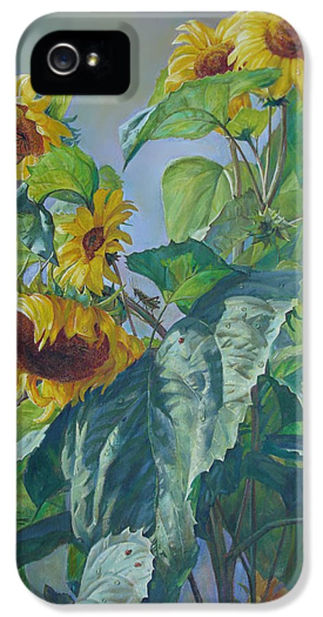 Sunflower IPhone 5 Case featuring the painting Sunflowers After The Rain by Svitozar Nenyuk
