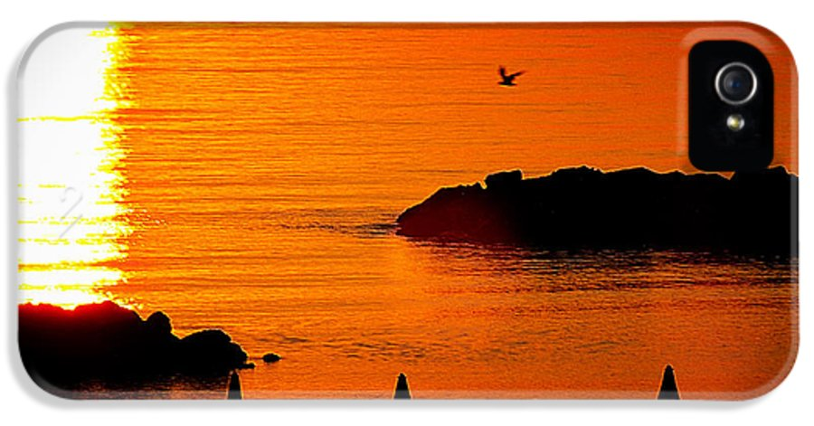 Sun Photographs IPhone 5 Case featuring the photograph Sunrise At The Adriatic Sea by Matteo Musso