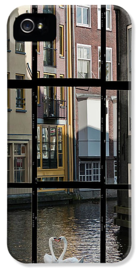 Joan Carroll IPhone 5 Case featuring the photograph Swans Love Amsterdam by Joan Carroll