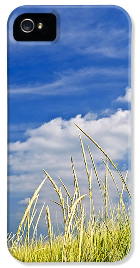 Tall IPhone 5 Case featuring the photograph Tall Grass On Sand Dunes by Elena Elisseeva