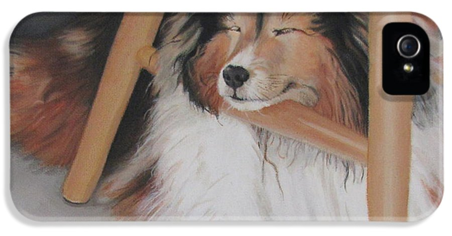 Shetland Sheepdog IPhone 5 Case featuring the painting Teddy In My Studio by Sandra Chase
