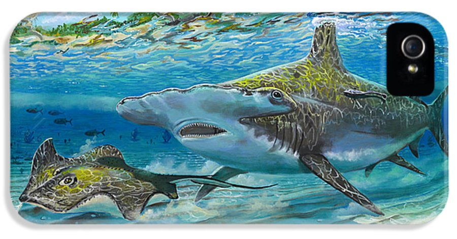 Shark IPhone 5 Case featuring the painting The Chase by Carey Chen