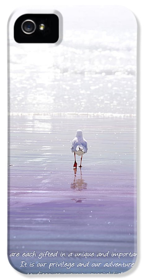 Seagull IPhone 5 Case featuring the photograph The Chosen One by Holly Kempe