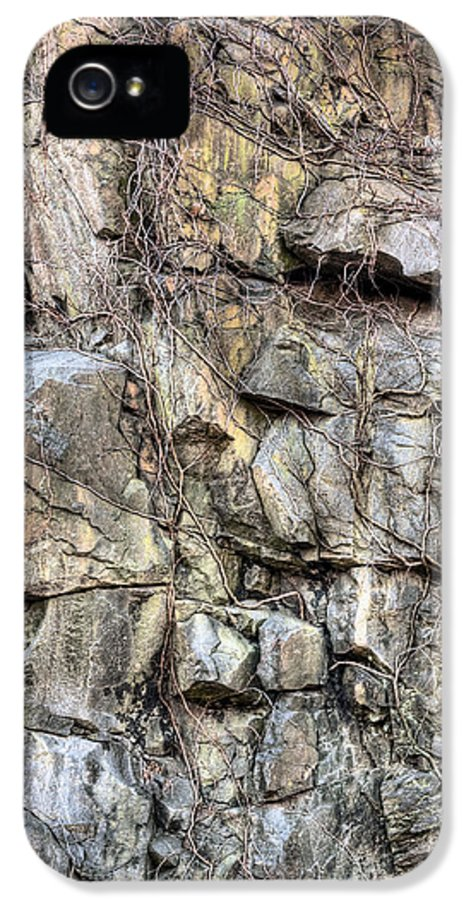 Face In The Roack IPhone 5 Case featuring the photograph The Face In The Rock by JC Findley