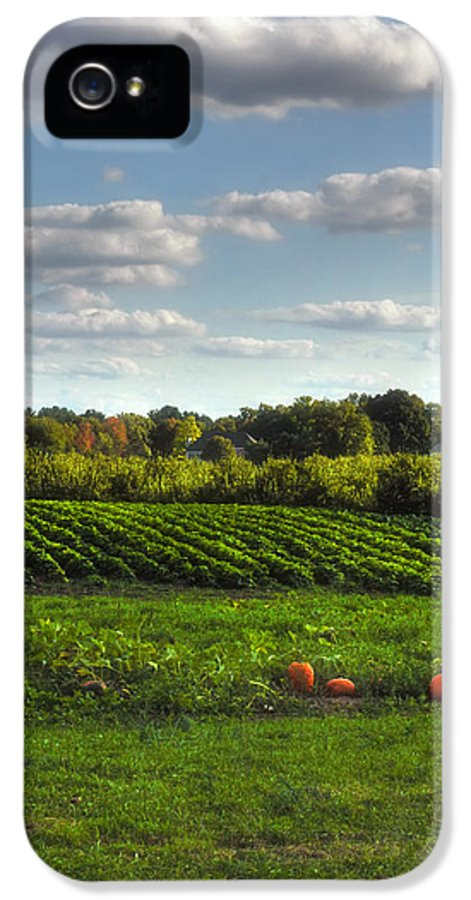 Farm IPhone 5 Case featuring the photograph The Farm by Joann Vitali
