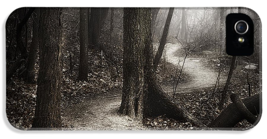 Path IPhone 5 Case featuring the photograph The Foggy Path by Scott Norris