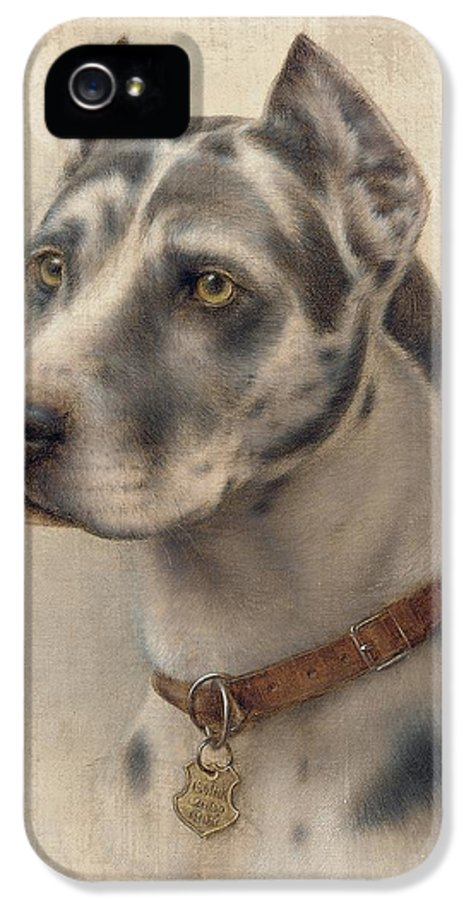 Head IPhone 5 / 5s Case featuring the painting The Head Of A Doberman by Wilhelm Schwar