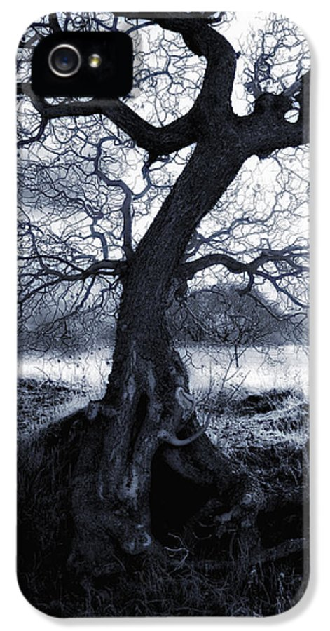 Spook IPhone 5 Case featuring the photograph The Horseman Rides Tonight by Donna Blackhall