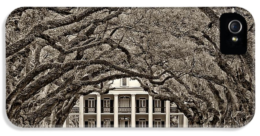 Oak Alley Plantation IPhone 5 Case featuring the photograph The Old South Sepia by Steve Harrington