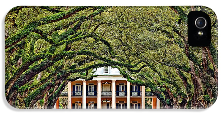 Oak Alley Plantation IPhone 5 Case featuring the photograph The Old South by Steve Harrington