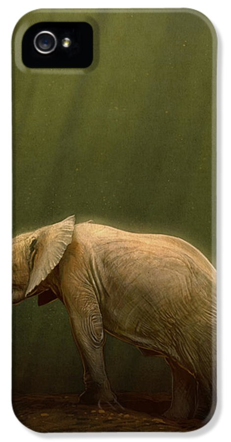 Elephant IPhone 5 Case featuring the digital art The Orphin by Aaron Blaise