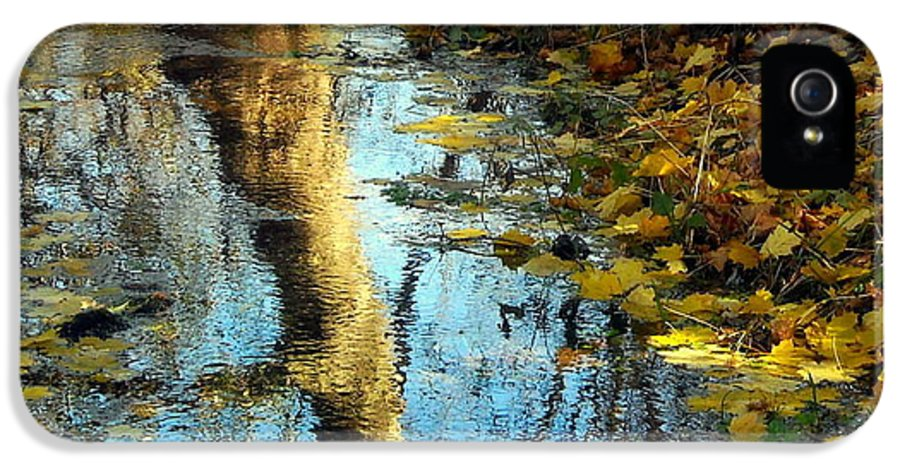 Autumn IPhone 5 Case featuring the photograph The Painter's Dream by Tami Quigley