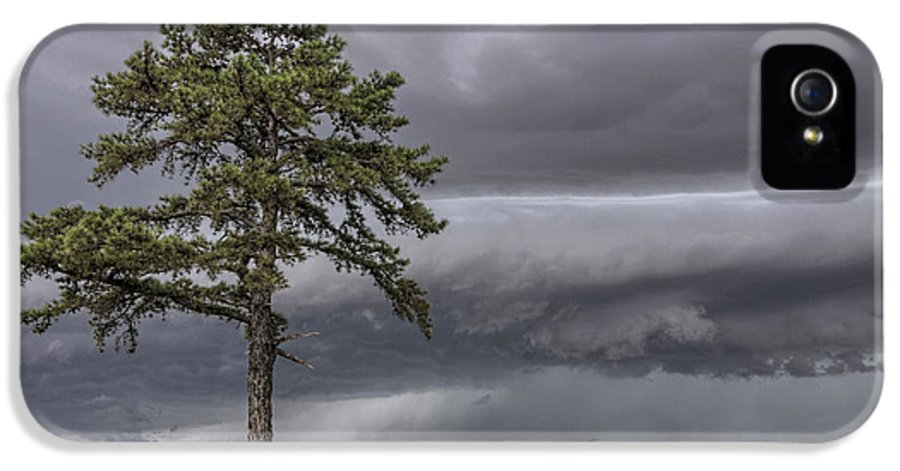 Thunderstorm IPhone 5 Case featuring the photograph The Thunder Rolls - Storm - Pine Tree by Jason Politte