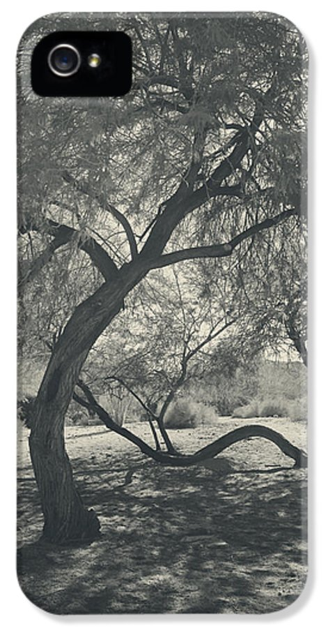 Palm Desert IPhone 5 Case featuring the photograph The Way We Move Together by Laurie Search