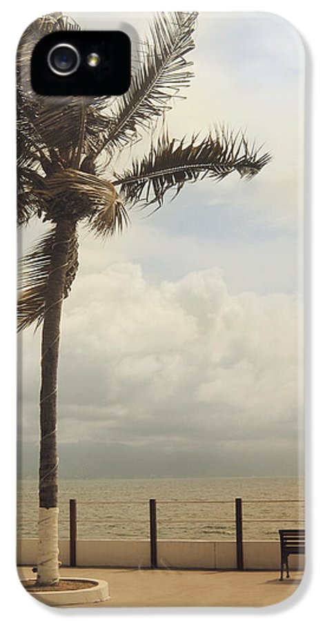 Puerto Vallarta IPhone 5 Case featuring the photograph The Wind In My Hair by Laurie Search