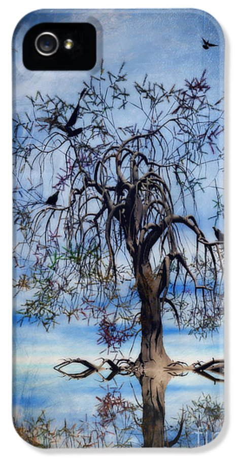 Wishing Tree IPhone 5 Case featuring the painting The Wishing Tree by John Edwards