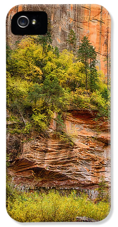 Fall IPhone 5 Case featuring the photograph The Writing On The Wall by Saija Lehtonen
