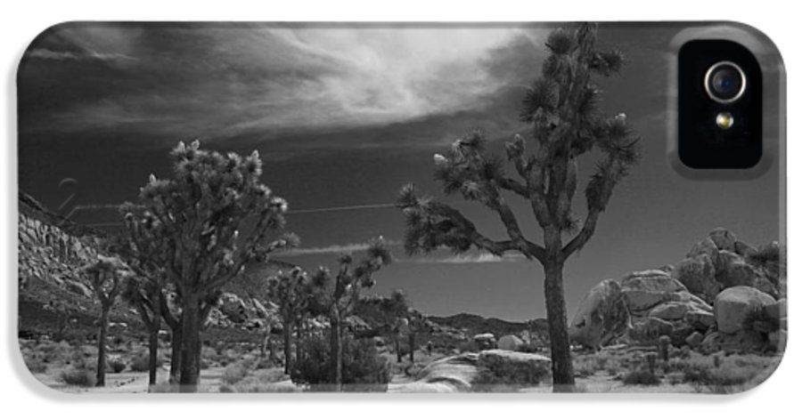 Joshua Tree National Park IPhone 5 Case featuring the photograph There Will Be A Way by Laurie Search