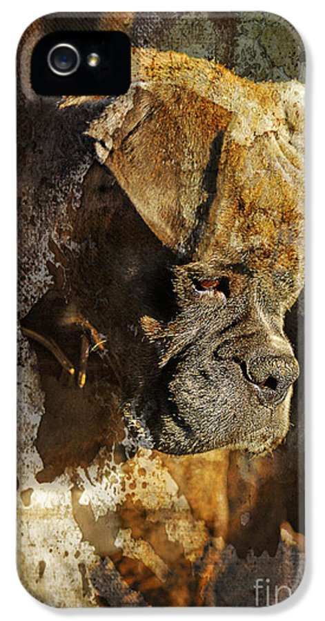 Dog IPhone 5 Case featuring the digital art Thought Process by Judy Wood