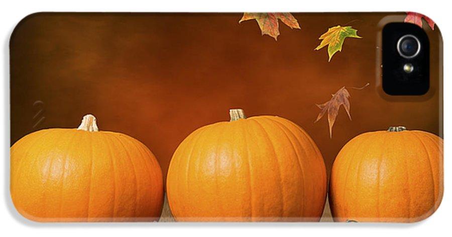 Pumpkin IPhone 5 Case featuring the photograph Three Pumpkins by Amanda Elwell