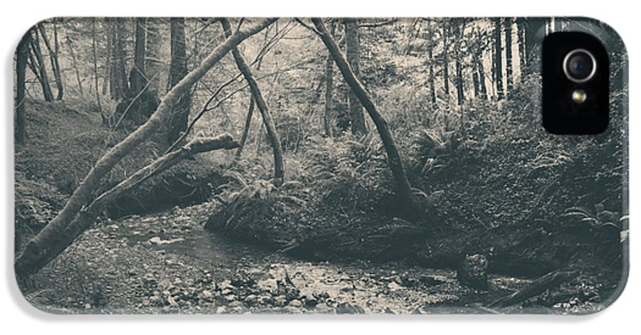 Purisima Creek Redwoods Open Space Preserve IPhone 5 Case featuring the photograph Through The Woods by Laurie Search