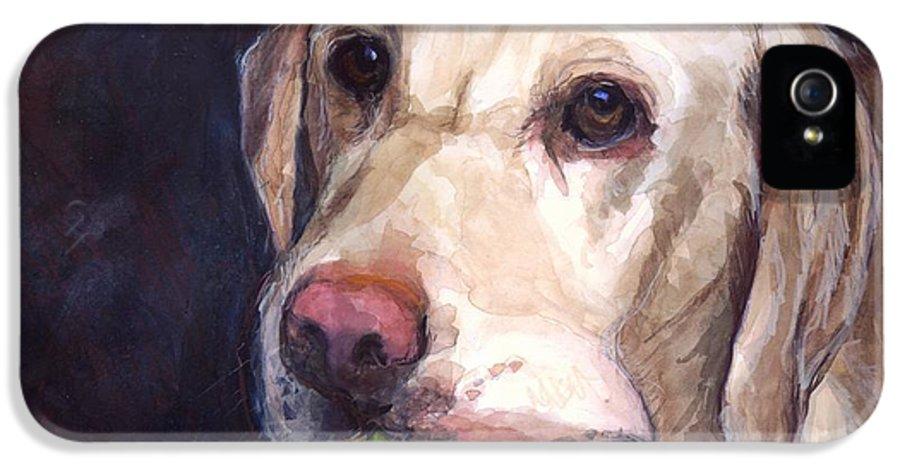 Yellow Labrador Retriever IPhone 5 Case featuring the painting Throw The Ball by Molly Poole
