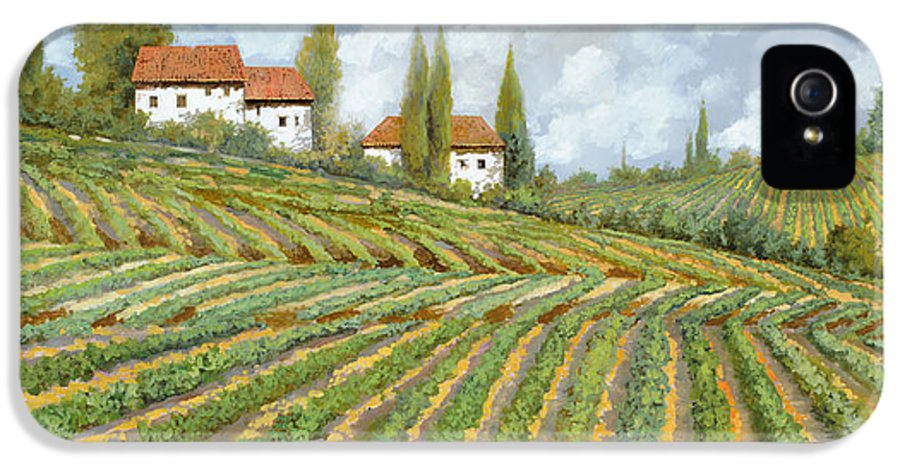 Vineyard IPhone 5 Case featuring the painting Tre Case Bianche Nella Vigna by Guido Borelli