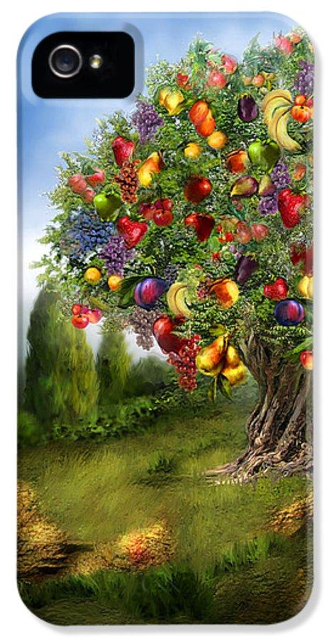 Tree IPhone 5 Case featuring the mixed media Tree Of Abundance by Carol Cavalaris