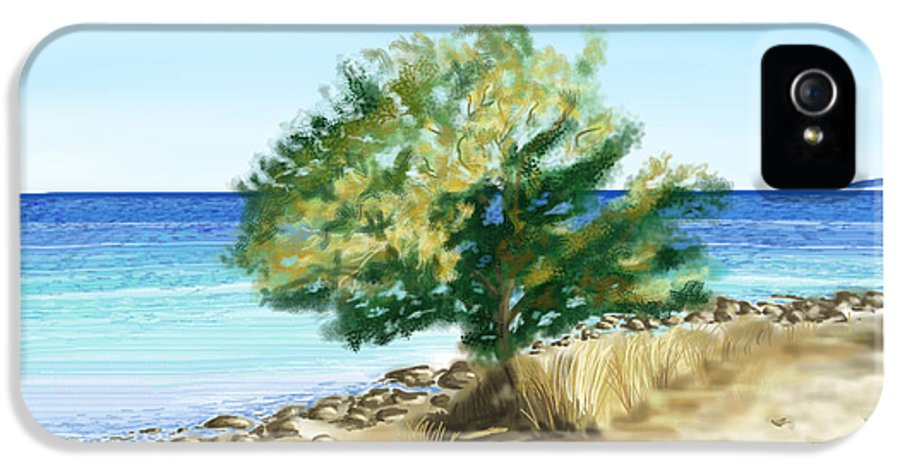 Tree IPhone 5 Case featuring the painting Tree On The Beach by Veronica Minozzi