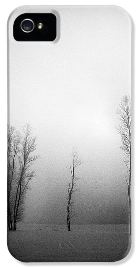 Landscapes IPhone 5 Case featuring the photograph Trees In Mist by Davorin Mance
