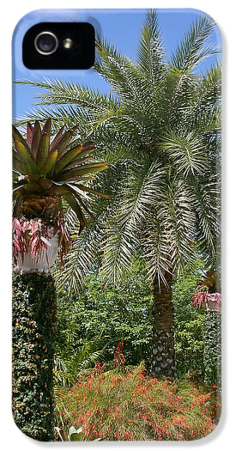 Palm IPhone 5 Case featuring the photograph Tropical Garden by Kim Hojnacki