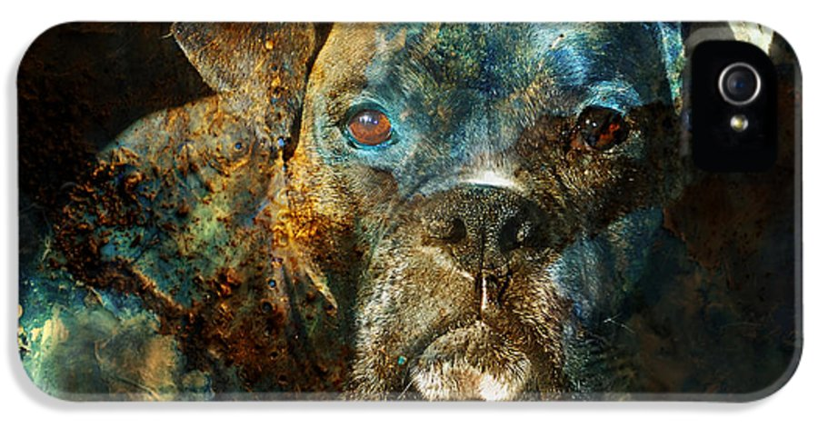 Dog IPhone 5 Case featuring the digital art True Colours by Judy Wood