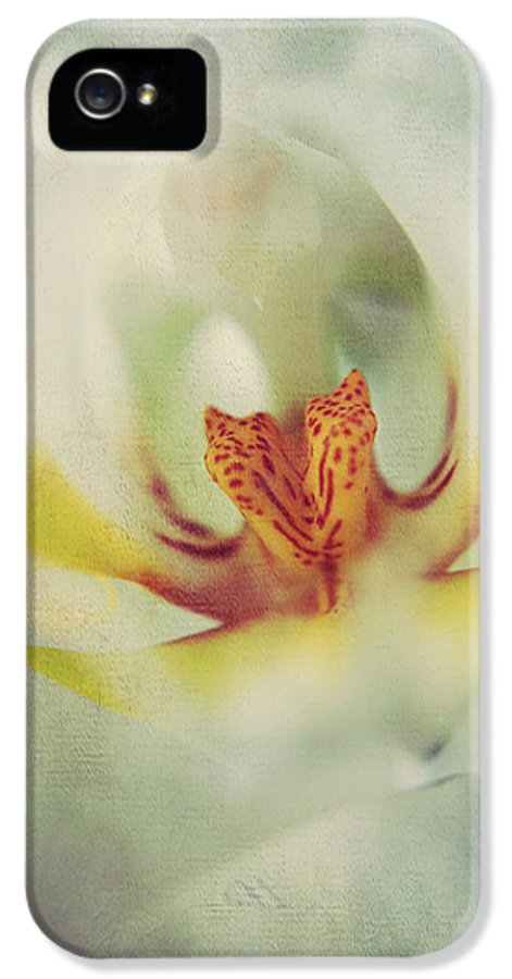 Orchids IPhone 5 Case featuring the photograph True by Laurie Search