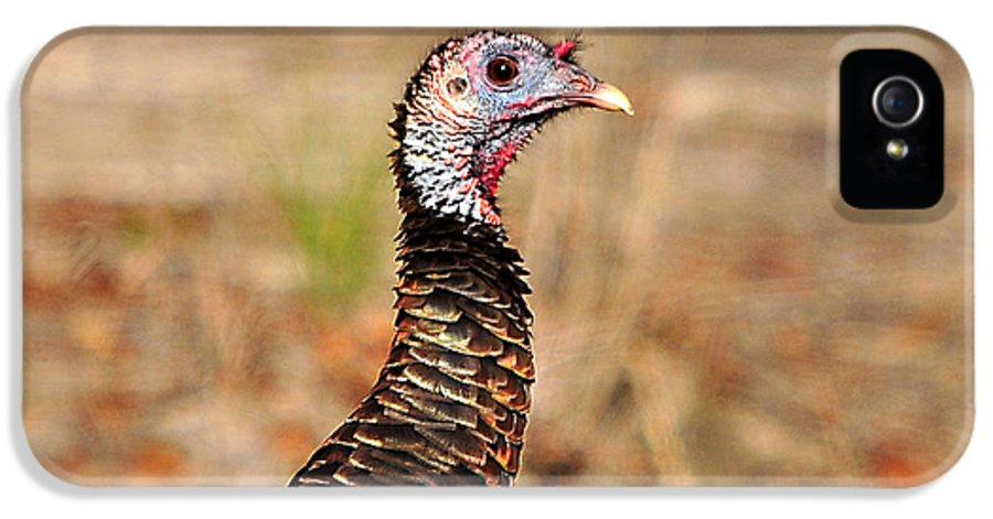 Turkey IPhone 5 Case featuring the photograph Turkey Profile by Al Powell Photography USA
