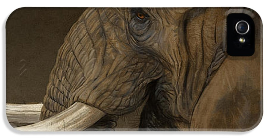 Elephant IPhone 5 Case featuring the digital art Tusker by Aaron Blaise