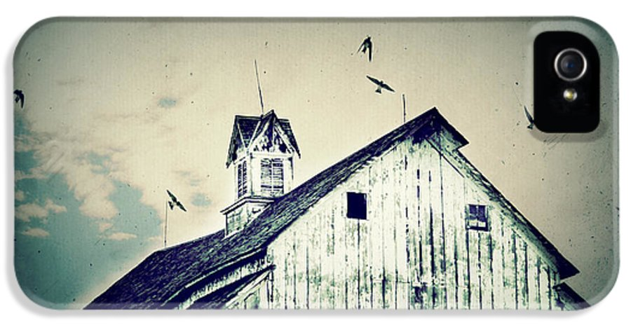 Barn IPhone 5 Case featuring the photograph Unique Cupola by Julie Hamilton